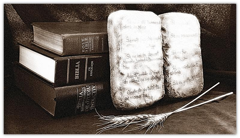 Bible and law