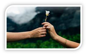 Rendering Forgiveness