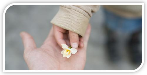 putting flower into hand
